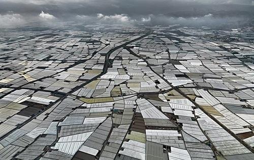 Трагические последствия роста населения на планете