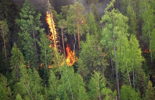 В пригороде Улан-Удэ БМД выпал из самолета во время учений, горит 200 га леса