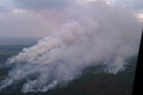 Біля ЧАЕС горить 130 га трави