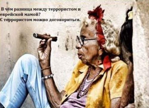 "Циля Зингельшухер: ""Гимн уничтожителей еды"""