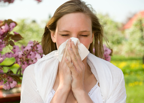 Осенняя аллергия