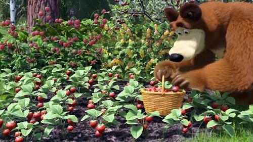 В гостях у сказки  - Маша и Медведь - День варенья (Серия 6)