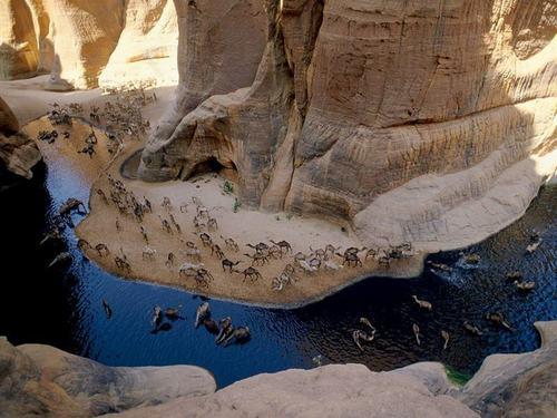 Гельта д'Аршей — водоем в пустыне Сахара