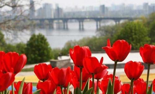 Погода в Украине, 9 марта