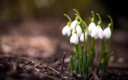 Погода в Украине, 16 марта