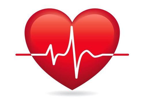 Факты о наших сердцах