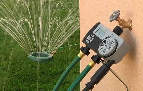 5 полезных новинок для садовода