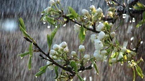 Погода в Украине, 22 апреля