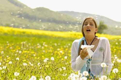 Аллергия: как уберечься