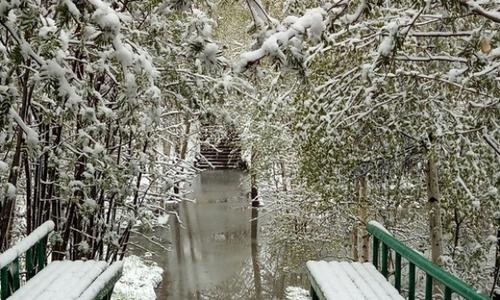 Россию 1 июня засыпало снегом