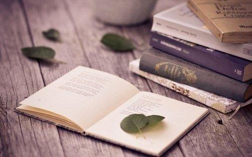4 отличные книги по интеллектуальному развитию