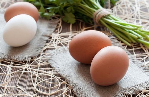 Выбираем яйца: белые или коричневые?