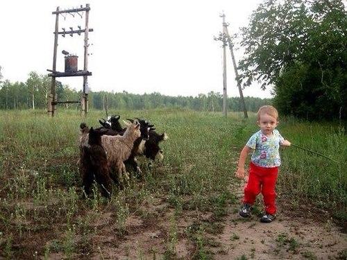 К бабушке в деревню отвезли на лето