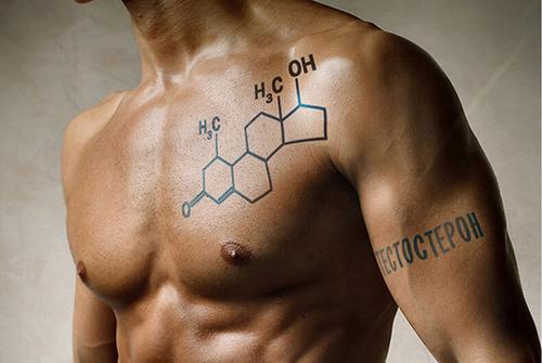 Тестостерон снижает подвижность сперматозоидов