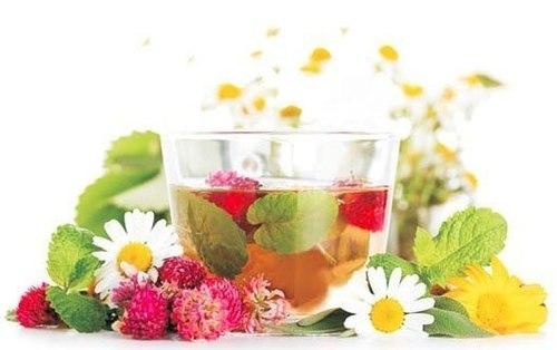 7 полезных травяных чаев