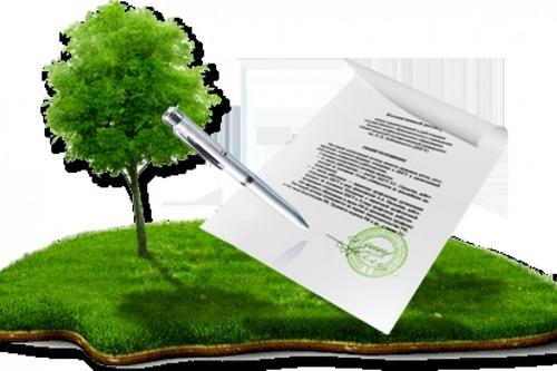 В Украине запустили услугу онлайн-регистрации земельного участка