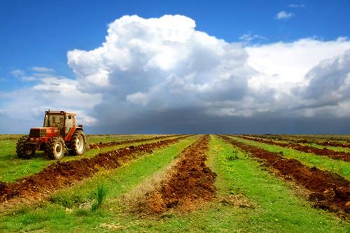 Сельхозземли в Украине будут оценивать по-новому