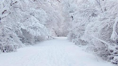 Погода в Украине 6 января