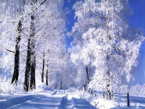 Погода в Украине 31 января: на востоке сильные морозы