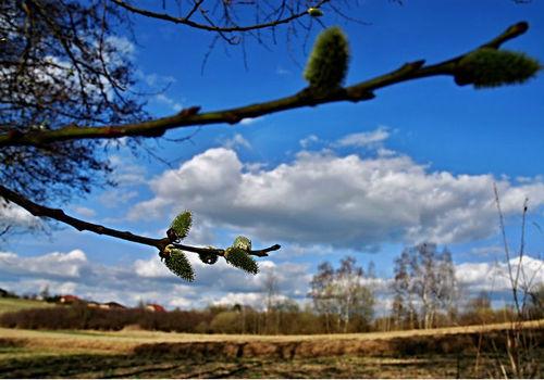 Погода в Украине 12 марта