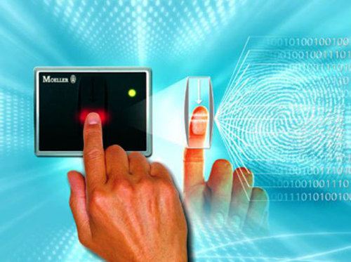 Вместо отпечатков пальцев: в США разработали новый метод распознавания личности