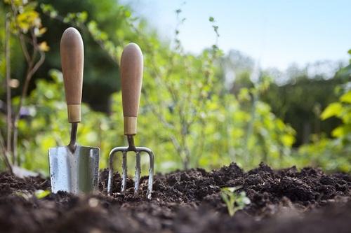 Лунный календарь садовода-огородника на май 2017