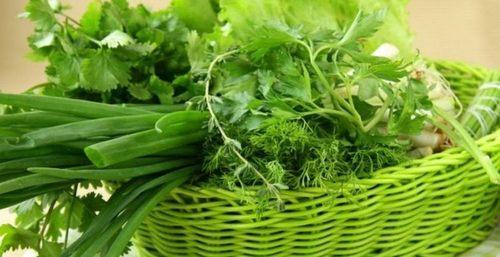 Врач рассказала, как правильно выбирать зелень и весенние овощи