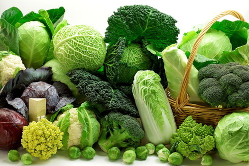 Брокколи, кольраби, савойская: какой вид капусты самый полезный?