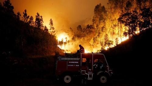 В Португалии в результате лесного пожара погибло более 60 человек