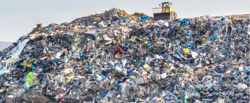 Обнаружены грибы, разрушающие пластик