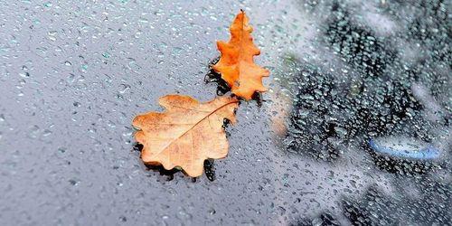 Прогноз погоды в Украине на 2 октября