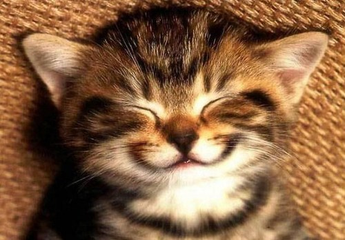 6 октября – Всемирный день улыбки