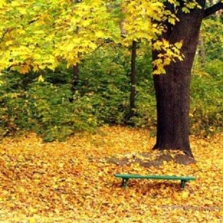 11 октября – день Ильи Муромца: приметы и суеверия