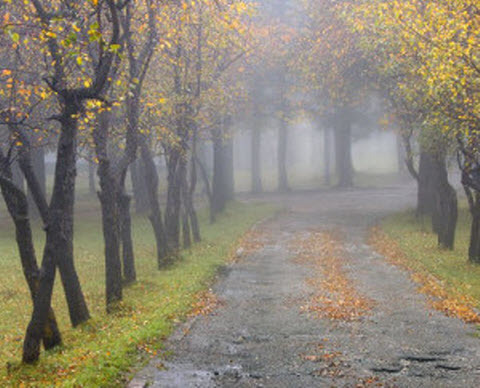 14 октября – Покров Пресвятой Богородицы: приметы и суеверия