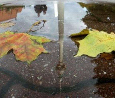15 октября – День Устиньи и Куприяна: приметы и суеверия