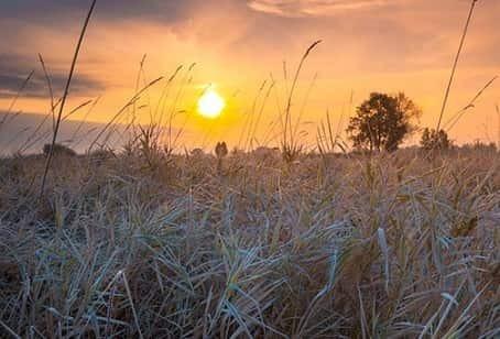 8 ноября – День Дмитрия Солунского: приметы и суеверия