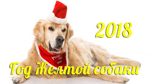 В чем встречать Новый 2018 год