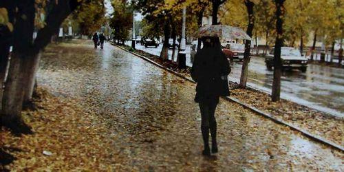 Прогноз погоды в Украине на 21 ноября