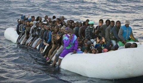 Акулы напали на мигрантов, плывших в Средиземном море