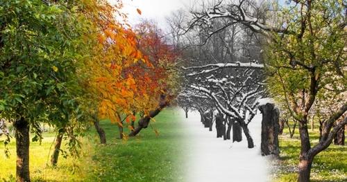 Влияет ли климат на темперамент человека