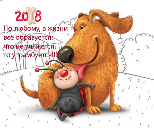 Анекдоты про Новый Год для взрослых