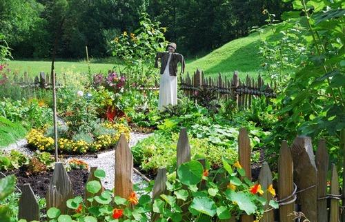 Как увеличить маленький огород. Полезные хитрости