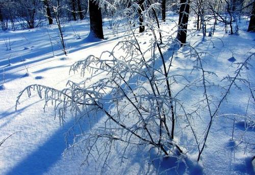 12 января – День Федоры, День Анисии: приметы и суеверия