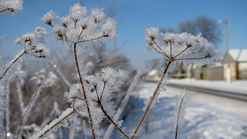 16 февраля – День Семена и Анны: приметы и суеверия