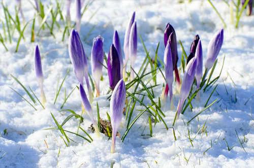 Прогноз погоды в Украине на 27 марта