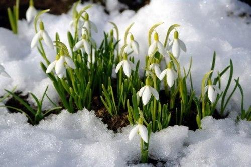 Прогноз погоды в Украине на выходные, 31 марта - 1 апреля