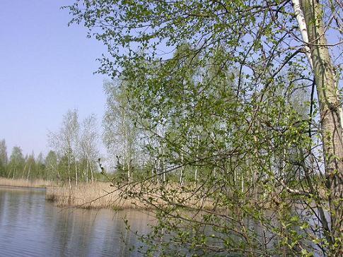18 апреля – Федора Ветреница, Федулов день: Приметы и суеверия