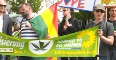 «Легализация марихуаны витает в воздухе?» - Кирилл Сазонов
