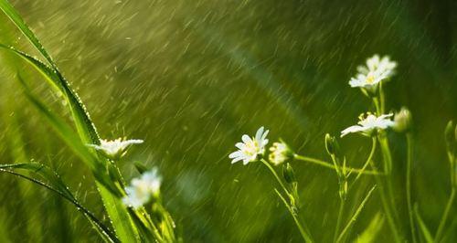 Прогноз погоды в Украине на 14 мая