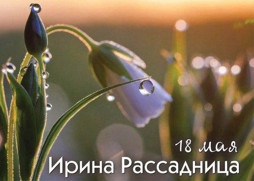 18 мая – День Арины-рассадницы: Приметы и суеверия